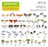 A flora isométrica lisa e a fauna de 3d África traçam o elemento do construtor ilustração do vetor