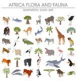 A flora isométrica lisa e a fauna de 3d África traçam o elemento do construtor Foto de Stock