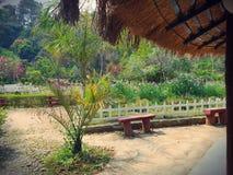 Flora och faunor på imphal Awangchein trädgård Royaltyfri Fotografi