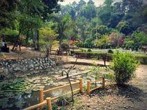 Flora och faunor på imphal Awangchein trädgård Dammkronblad och lotusblomma är skönheten av detta ställe Fotografering för Bildbyråer