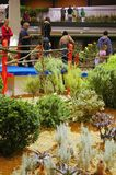 Flora Olomouc Royaltyfri Foto