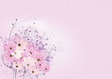 Flora oriental greeting card. On pink Royalty Free Stock Photo