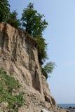 Flora på klippan. Royaltyfri Foto