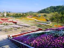 Flora Park - Nakhon Ratchasima Royalty-vrije Stock Fotografie