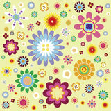 Flora pattern. Colorful flowers pattern as design background Stock Photos