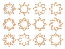 Flora Pattern Vector Design Elements nel colore morbido di Brown Fotografie Stock Libere da Diritti