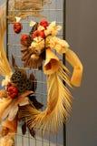 Flora secada e fauna foto de stock royalty free