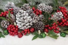 Flora tradicional de la Navidad Fotografía de archivo libre de regalías