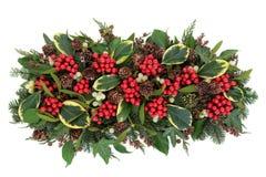 Flora tradizionale di inverno Immagine Stock
