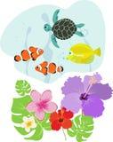Flora tropical y fauna Foto de archivo libre de regalías