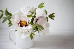 Floración árbol-como peonía Apenas llovido encendido Foto de archivo