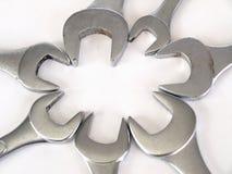 Floración de la llave Fotografía de archivo libre de regalías