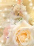 Floración de la rosa amarilla del beige foto de archivo libre de regalías