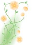 Floración de las flores. ilustración del vector