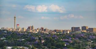 Floración de los Jacarandas del horizonte de Johannesburgo CBD Imagen de archivo