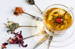 Floración o té floreciente en una taza de cristal y cucharas con diversas clases de té en el fondo blanco fotografía de archivo