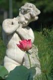 Floración romántica fotografía de archivo libre de regalías