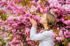 Floraci?n blanda El rosa es el color m?s de ni?a Brillante y vibrante El rosa es mi favorito La ni?a disfruta de la primavera Niñ fotografía de archivo