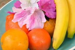 Floraciones de la azalea, y fruta tropical en cuenco Imágenes de archivo libres de regalías