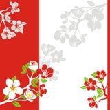 Floraison de source Image libre de droits