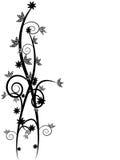 floral άμπελοι Στοκ φωτογραφία με δικαίωμα ελεύθερης χρήσης