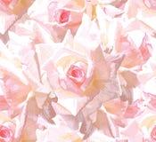 floral άνευ ραφής ανασκόπησης Στοκ Εικόνες