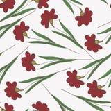 Όμορφο εκλεκτής ποιότητας άνευ ραφής floral υπόβαθρο Στοκ Εικόνα