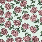 Όμορφο εκλεκτής ποιότητας άνευ ραφής floral υπόβαθρο Στοκ φωτογραφία με δικαίωμα ελεύθερης χρήσης