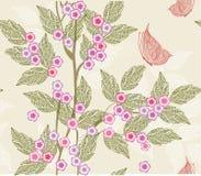 floral άνευ ραφής διάνυσμα σύστ&alpha Στοκ Εικόνες