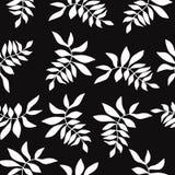 floral άνευ ραφής διάνυσμα προτύ&p Στοκ εικόνες με δικαίωμα ελεύθερης χρήσης