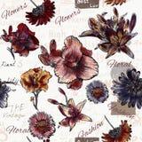 Floral άνευ ραφής διανυσματικό υπόβαθρο με τα λουλούδια ύφους watercolor Στοκ φωτογραφία με δικαίωμα ελεύθερης χρήσης