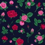 Floral άνευ ραφής πρότυπο με τα τριαντάφυλλα διανυσματική απεικόνιση