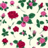Floral άνευ ραφής πρότυπο με τα τριαντάφυλλα Στοκ Φωτογραφίες