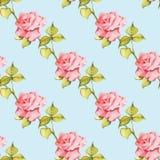 Floral άνευ ραφής πρότυπο με τα τριαντάφυλλα Στοκ εικόνες με δικαίωμα ελεύθερης χρήσης