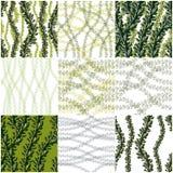 Floral άνευ ραφής σχέδια που τίθενται με τα φύλλα και τους κλάδους, διανυσματική GR Στοκ Εικόνα