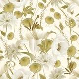 Floral άνευ ραφής σχέδιο άνοιξη Ο κήπος ανθίζει peonies, κρίνος, asters απεικόνιση αποθεμάτων