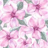 Floral άνευ ραφής σχέδιο με τα ρόδινα λουλούδια 4 Στοκ Εικόνες
