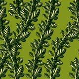 Floral άνευ ραφής σχέδιο με τα φύλλα και τους κλάδους, διανυσματικό πράσινο υπόβαθρο υφάσματος Μπλεγμένοι μίσχοι, κήπος και δασικ απεικόνιση αποθεμάτων