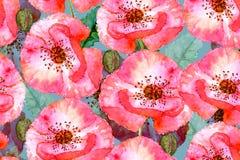 Floral άνευ ραφής σχέδιο τέχνης ανασκόπησης μεγάλο διακοσμητικό λευκό παπαρουνών λουλουδιών απομονωμένο κήπος ελεύθερη απεικόνιση δικαιώματος