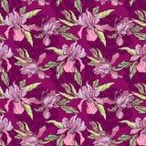 Floral άνευ ραφής σχέδιο με συρμένα τα χέρι λουλούδια, ορχιδέες με το μΑ Στοκ Εικόνες