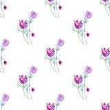 Floral άνευ ραφής σχέδιο με τα λουλούδια pasque απεικόνιση αποθεμάτων