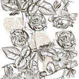 Floral άνευ ραφής σχέδιο με τα τριαντάφυλλα στο χαραγμένο ύφος Στοκ Φωτογραφία
