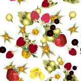 Floral άνευ ραφής σχέδιο με τη φράουλα, βατόμουρο, μούρα και Στοκ Φωτογραφίες