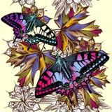 Floral άνευ ραφής σχέδιο με τις ζωηρόχρωμα πεταλούδες και το φύλλωμα Στοκ Εικόνα