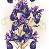 Floral άνευ ραφής σχέδιο ταπετσαριών με τα πορφυρά λουλούδια Στοκ εικόνες με δικαίωμα ελεύθερης χρήσης