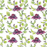 Floral άνευ ραφής σχέδιο Watercolor Στοκ Φωτογραφία