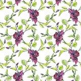 Floral άνευ ραφής σχέδιο Watercolor Στοκ Εικόνες
