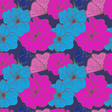 Floral άνευ ραφής σύνθεση σύνθεσης σε ένα μπλε υπόβαθρο Στοκ Φωτογραφίες