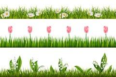 Floral άνευ ραφής σύνορα άνοιξη διάνυσμα ελεύθερη απεικόνιση δικαιώματος