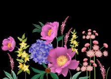 Floral άνευ ραφής σύνορα σχεδίων όμορφος κήπος λουλουδιών λεπίδων ανασκόπησης διανυσματική απεικόνιση